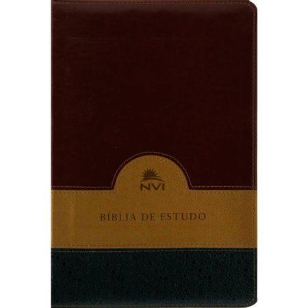 biblia-de-estudo-nvi-capa-vinho-bege-e-verde