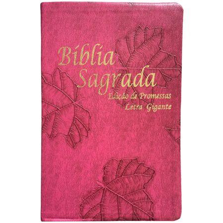 biblia-edicao-de-promessas-letra-gigante-pink