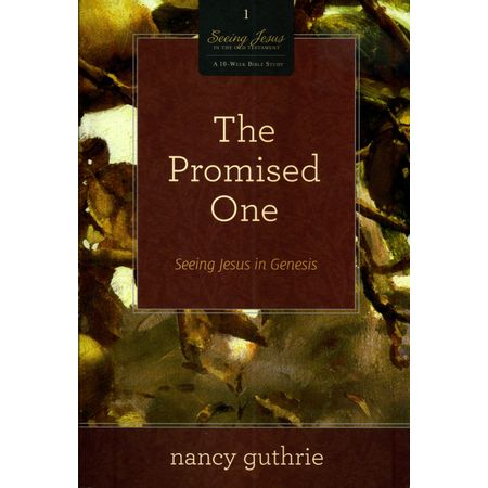 The-Promised-One