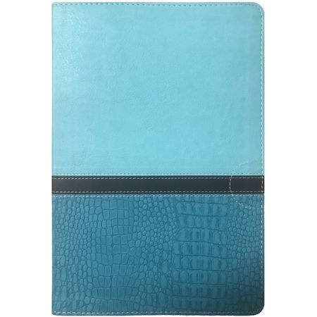 Holy-Bible-NIV-Thinline-Large-Print-Turquoise