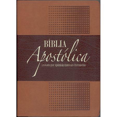 Biblia-Apostolica-Anotada
