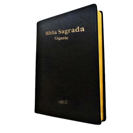 Biblia-Sagrada-Letra-Gigante