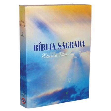 Biblia-Sagrada-Edicao-de-Promessas-Brochura