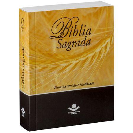 Biblia-Sagrada-Pequena-RA-Brochura