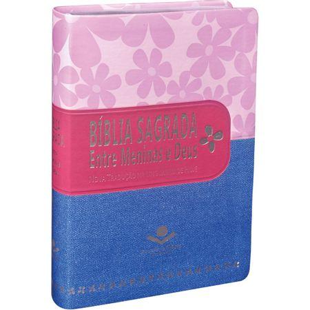 Biblia-Sagrada-Entre-Meninas-e-Deus-Rosa-e-Azul