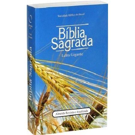 biblia-ra-letra-gigante-capa-brochura-trigo