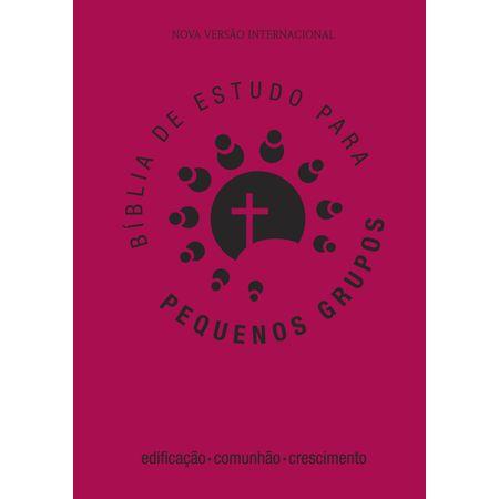 biblia-para-pequenos-grupos-rosa