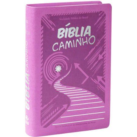 biblia-caminho-capa-feminina-9b2234