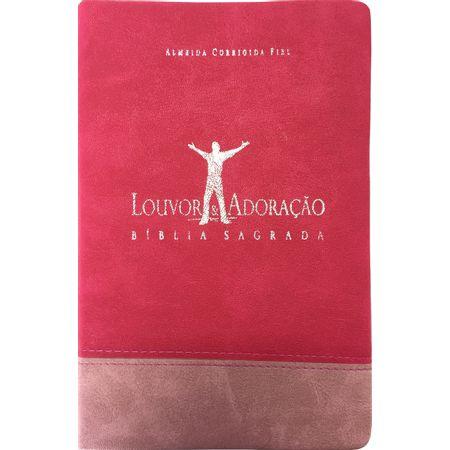 Biblia-Louvor-e-adoracao
