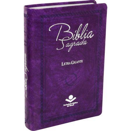 Biblia-edicao-especial-