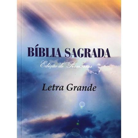 Biblia-Brochura-letra-Grande