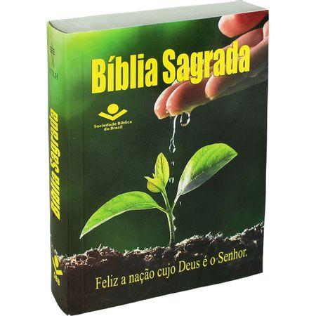 Biblia-Brochura-ntlh-fonte-de-bencao-