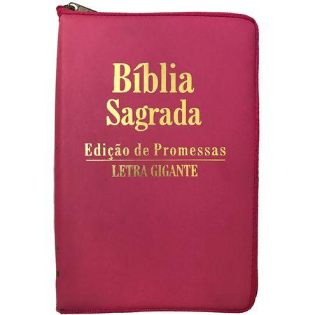 Biblia-Ed-Promessas-letra-gigante-ziper-pink