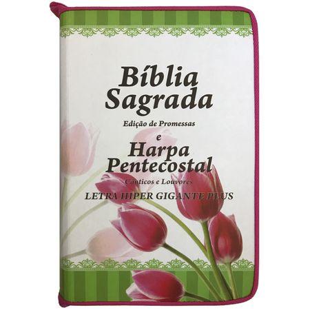 Biblia-e-Harpa-pentecostal-letra-hipergigante-edicao-de-promessas-linha-gold-pink-tulipas