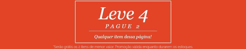 LEVE 4 PAGUE 2