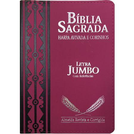 Biblia-Sagrada-Letra-Jumbo-Com-Harpa-Avivada-Pink