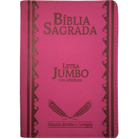 Biblia-Sagrada-Letra-Jumbo-Pink