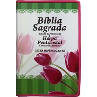 Biblia-e-Harpa-Pentecostal-Letra-Hipergigante-Linha-Gold-Pink-TULIPA