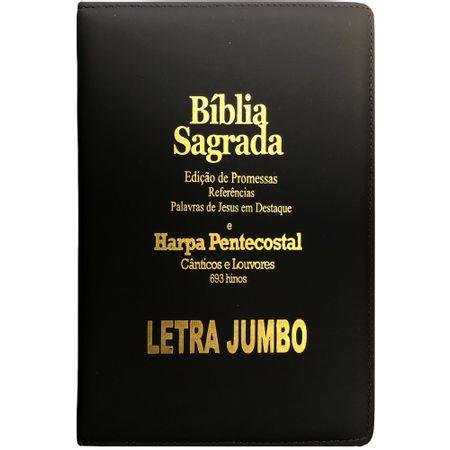 Biblia-Edicao-de-Promessas-Letra-Jumbo-Com-Ziper