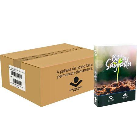 Caixa-Biblia-NAA-Brochura-para-Evangelismo-40-Biblias