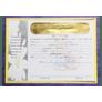 Certificado-de-Apresentacao-de-Criancas-Menino