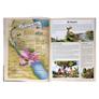 Atlas-Biblico-Totalmente-Ilustrado
