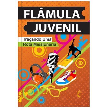 Revista-de-Estudo-Flamula-Juvenil
