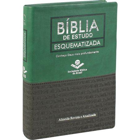 Biblia-de-estudo-esquematizada-
