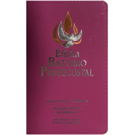 Biblia-Batismo-Pentecostal-rosa-